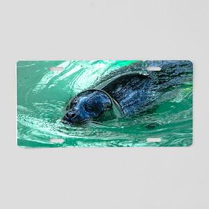 Swimming Seal Aluminum License Plate