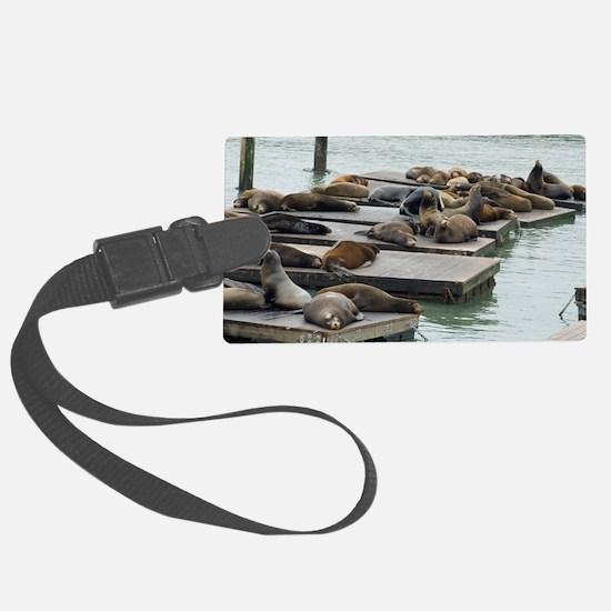 seals at fishermans wharf Luggage Tag