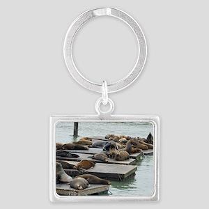 seals at fishermans wharf Landscape Keychain