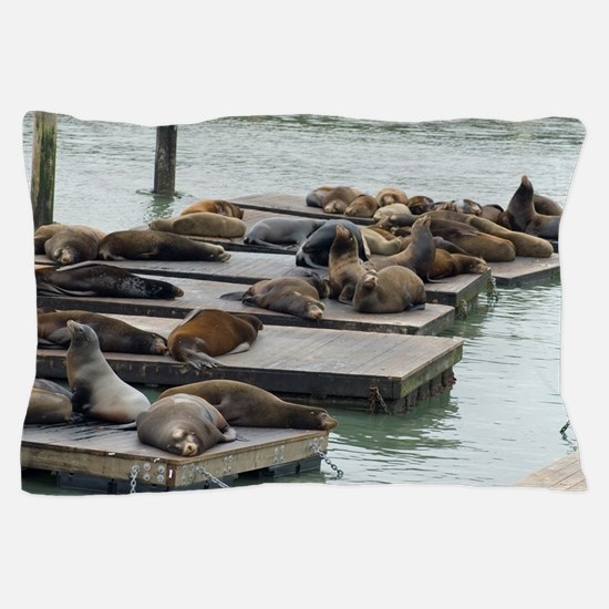 seals at fishermans wharf Pillow Case