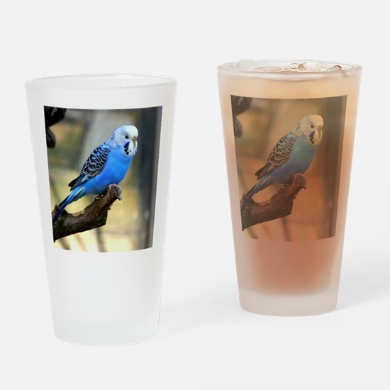 Blue Budgie Drinking Glass