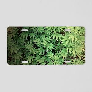 Marajuana Weed Pot Aluminum License Plate