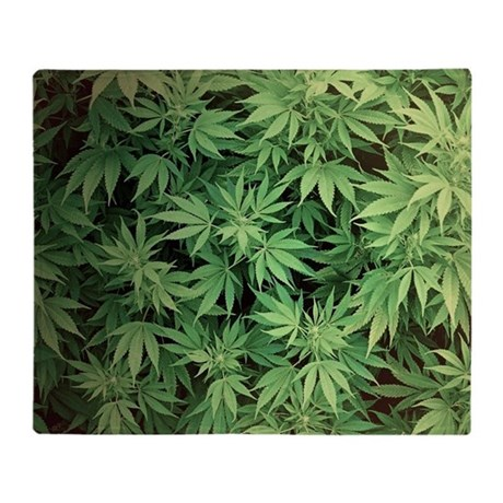 Weed Chat Room Uk