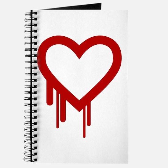 HeartBleed Journal