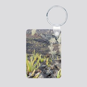 Lava Field Plants Aluminum Photo Keychain