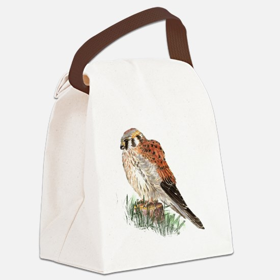 Watercolor Kestrel Falcon Bird Nature Art Canvas L