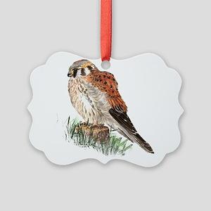 Watercolor Kestrel Falcon Bird Picture Ornament