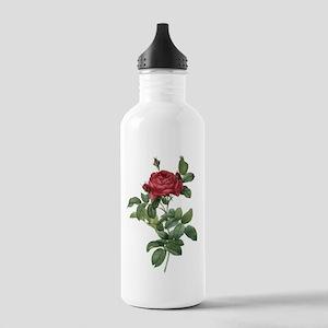 Rosa Gallica Pontiana Water Bottle