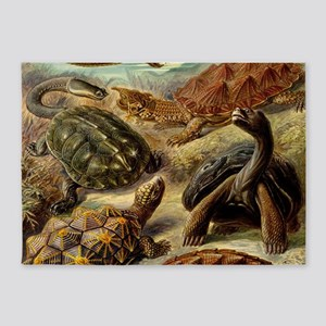 Beautiful Turtles Art 5'x7'Area Rug