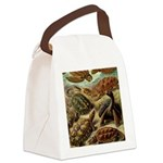 Beautiful Turtles Art Canvas Lunch Bag