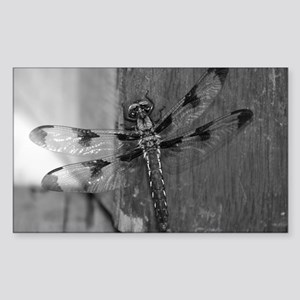 Dragonfly Black & White Sticker (Rectangle)