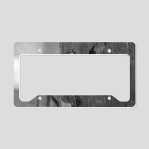 Dragonfly Black & White License Plate Holder