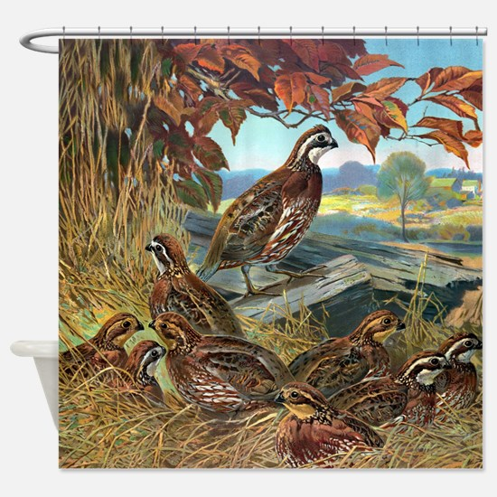 Nesting Quail Shower Curtain