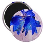 Fairy flowers Magnets