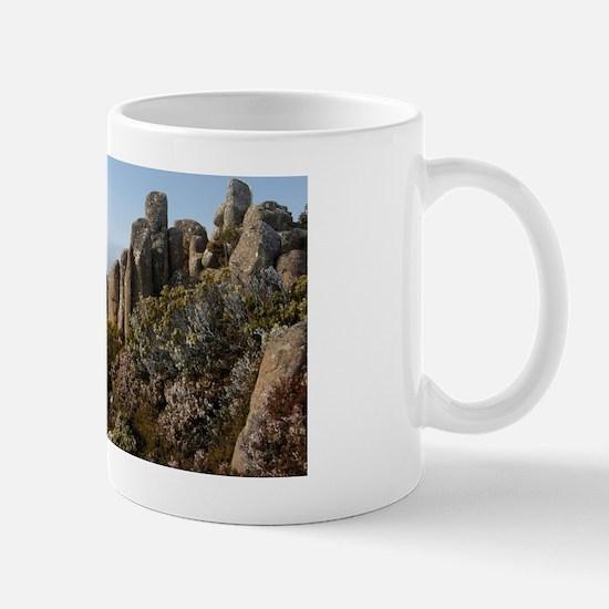mount wellington viewing shelter Mug