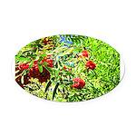 Rowan berries Oval Car Magnet