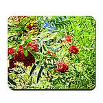Rowan berries Mousepad