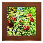 Rowan berries Framed Tile