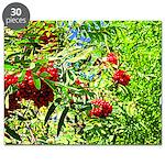 Rowan berries Puzzle