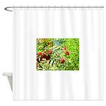 Rowan berries Shower Curtain