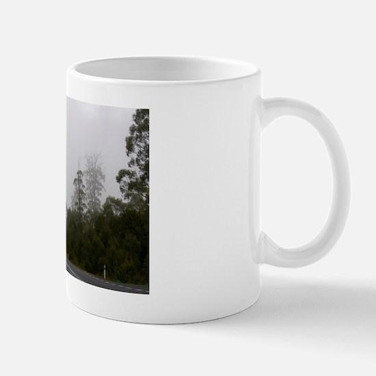 gordon river road Mug