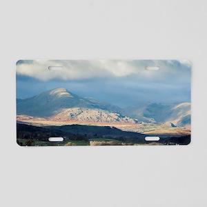 balwith knott Aluminum License Plate