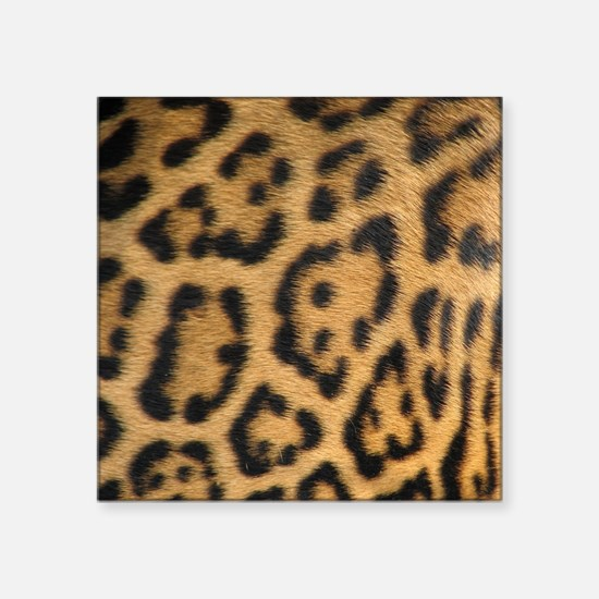 "Leopard fur Square Sticker 3"" x 3"""