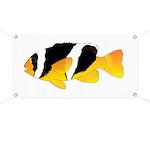Sebae Anemonefish Banner