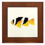 Sebae Anemonefish Framed Tile