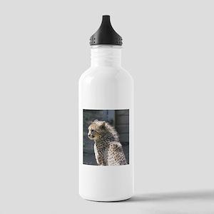 cheetah Water Bottle