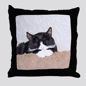 Sweet Kitty Throw Pillow