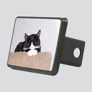 Sweet Kitty Rectangular Hitch Cover