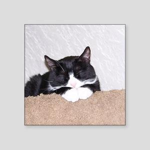"Sweet Kitty Square Sticker 3"" x 3"""