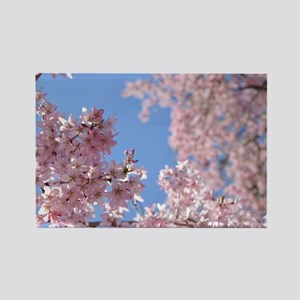 Cherry blossom Tree Rectangle Magnet
