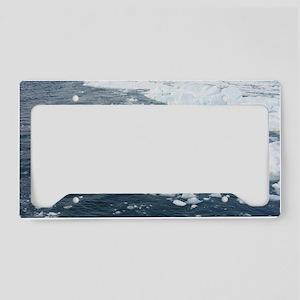 Blue Ice License Plate Holder