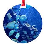 Maui Aquarium Round Ornament