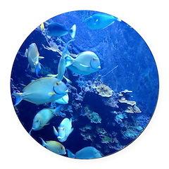 Maui Aquarium Round Car Magnet