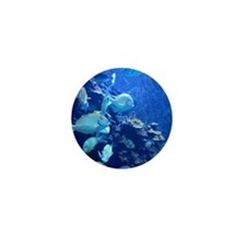 Maui Aquarium Mini Button