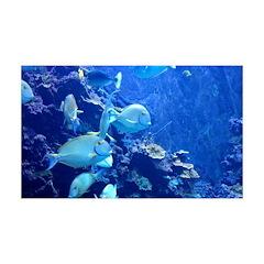 Maui Aquarium Decal Wall Sticker