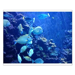 Maui Aquarium Small Poster