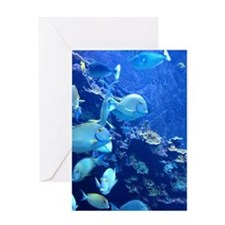 Maui Aquarium Greeting Cards