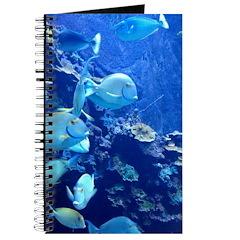 Maui Aquarium Journal