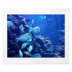 Maui Aquarium King Duvet