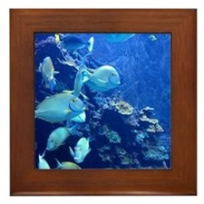 Maui Aquarium Framed Tile