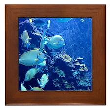 Maui Aquarium Framed Tile