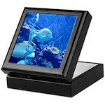 Maui Aquarium Keepsake Box