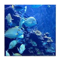 Maui Aquarium Tile Coaster