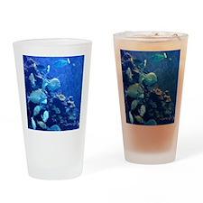 Maui Aquarium Drinking Glass