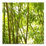Bamboo Forest Square Car Magnet 3