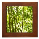Bamboo Forest Framed Tile